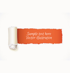 torn paper with space for text vector image