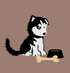 Huskies vector