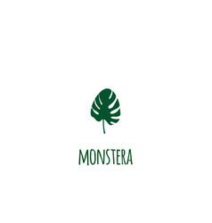 monstera tropical leaf - flat vector image