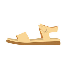 womens comfortable casual sandal on flat sole vector image