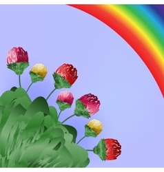 Flowers and rainbow Spring bright background vector image vector image