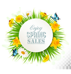 Nature spring background with narcissus daisies vector