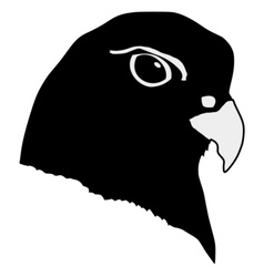 black silhouette of gyrfalcon vector image