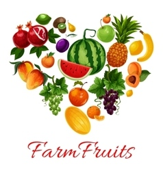 Farm fruits icons in heart shape vector image vector image