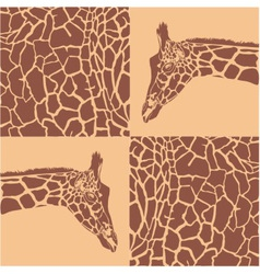 Giraffe patterns beige and brown vector image vector image