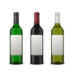 set 3 realistic wine bottles with blank vector image vector image