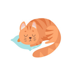Cute red cat animal sleeping on pillow vector