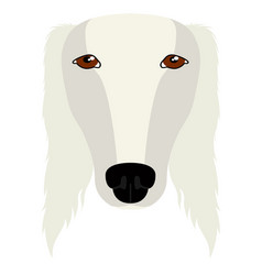 isolated saluki avatar vector image