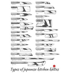 Japanese kitchen knives vector