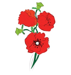 Red Poppy Flowers2 vector image