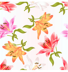 seamless texture stem lily flower vector image