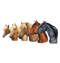 set of horses breeds 4 vector image