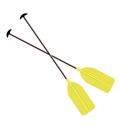 Sports oar vector