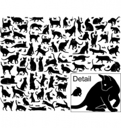 cat outlines vector image vector image