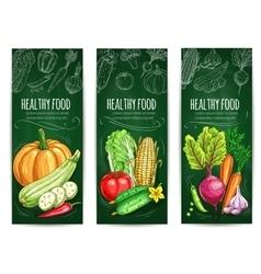 Vegetable healthy food chalk sketch banner set vector image