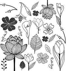 Flower sketch doodle vector