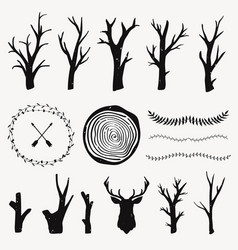 graphic set with forest design elements branches vector image