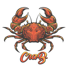 hand drawn crab vector image