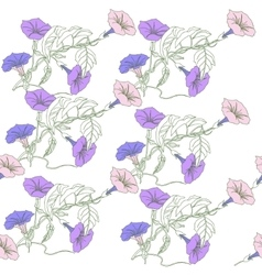 Seamless pattern with blue pink bindweed vector