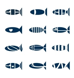 Set of fish icons vector image