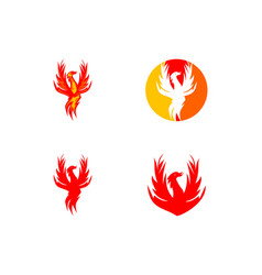 set of phoenix logo design template vector image