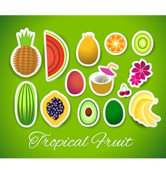 stickers tropical fruit vector image