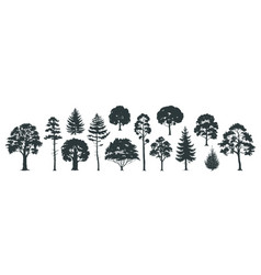 Trees silhouettes forest and park pines firs vector