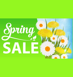 spring sale with daisies and dandelions and grass vector image vector image