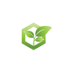 Abstract sprout in hexagon agriculture logo vector