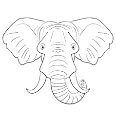 Black and white elephant face drawn ink sketch vector