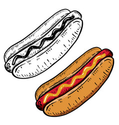 hand drawn hot dog design element for menu vector image