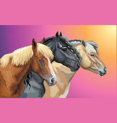 set of horses breeds 9 vector image