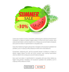 Summer sale watermelon discount isolated banner vector
