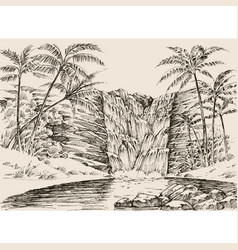 Tropical waterfall hand drawing palm trees vector