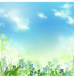 Summer or spring meadow vector