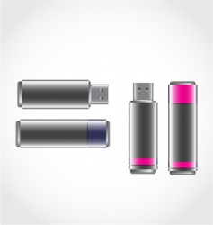 USB stick vector image