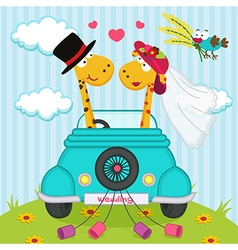 wedding with giraffes vector image vector image