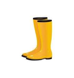 pair of rain boots wellingtons autumn footwear vector image