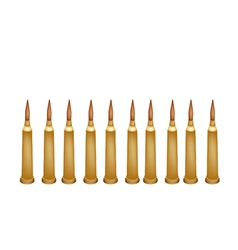 Set of Rifle Bullets on White Background vector image