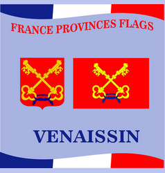 Flag of french province venaissin vector