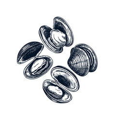 hand drawn cooked oyster shells frame design vector image