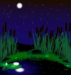 Night lake vector
