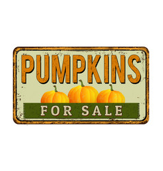 pumpkins for sale vintage rusty metal sign vector image