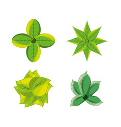 Set of natural and ecology icons flowers design vector