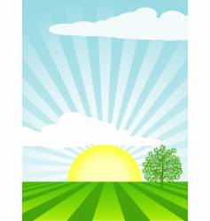 spring cultivated landscape vector image