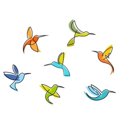 Abstract colorful hummingbirds vector image vector image