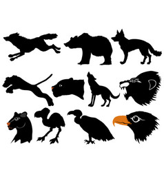 predators of wildlife vector image vector image