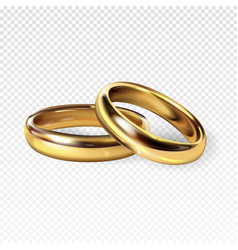 golden wedding rings 3d vector image