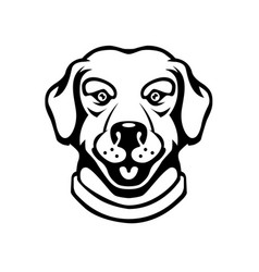 labrador head in engraving style design element vector image