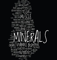 Minerals good for your bones organs and tissue vector